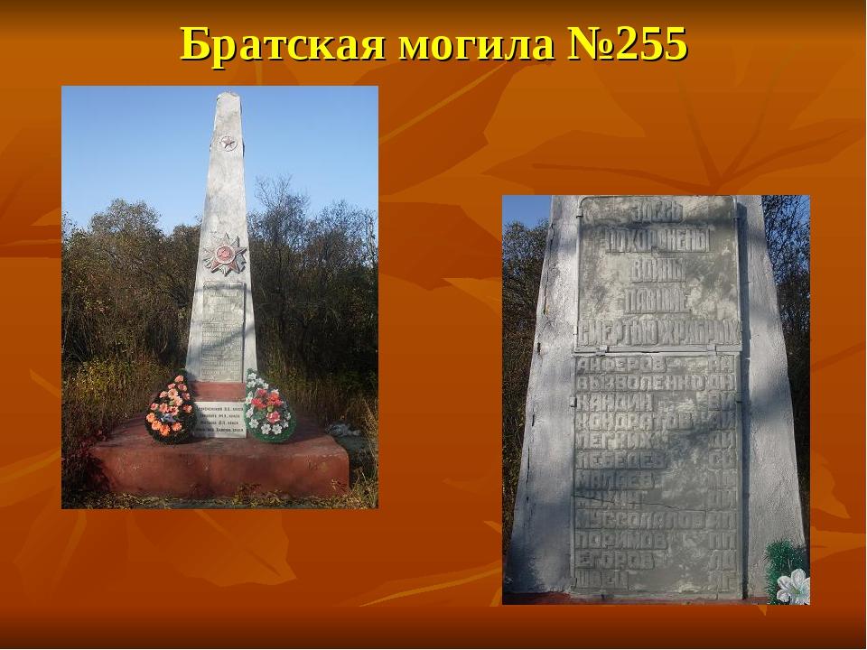 Братская могила №255