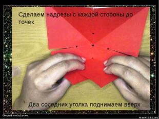 Сделаем надрезы с каждой стороны до точек Два соседних уголка поднимаем вверх