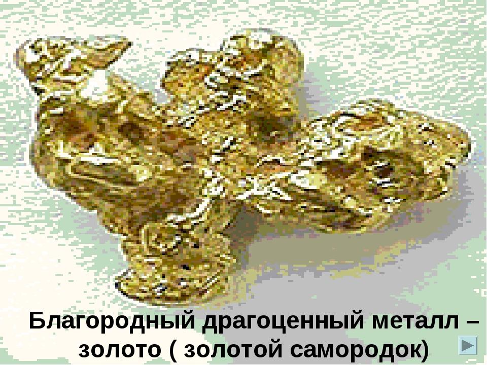 Благородный драгоценный металл – золото ( золотой самородок)