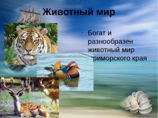 Животный мир Богат и разнообразен животный мир Приморского края