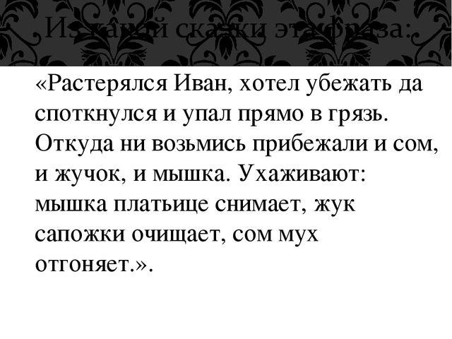 «Растерялся Иван, хотел убежать да споткнулся и упал прямо в грязь. Откуда ни...