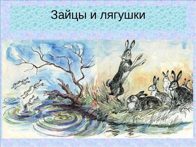 Зайцы и лягушки