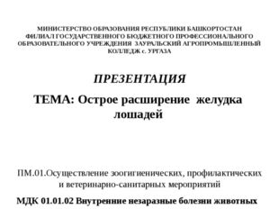 МИНИСТЕРСТВО ОБРАЗОВАНИЯ РЕСПУБЛИКИ БАШКОРТОСТАН ФИЛИАЛ ГОСУДАРСТВЕННОГО БЮД