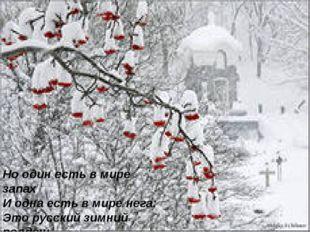 Но один есть в мире запах И одна есть в мире нега: Это русский зимний полден