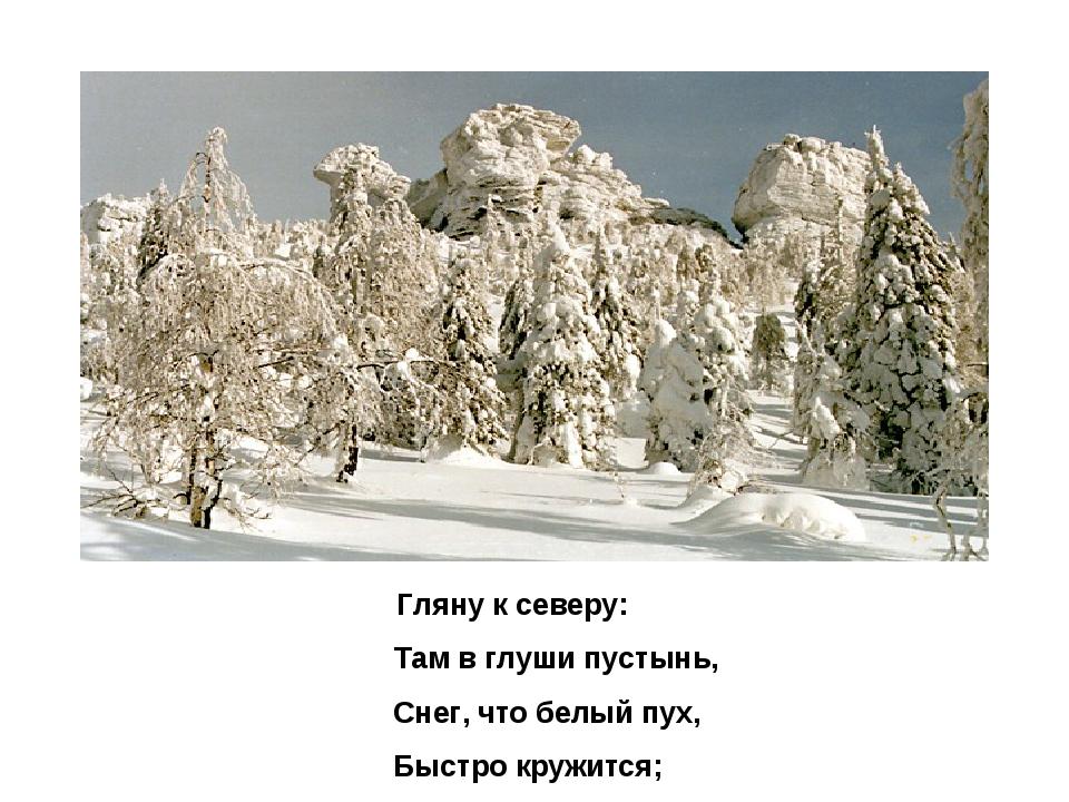 Гляну к северу: Там в глуши пустынь, Снег, что белый пух, Быстро кружится;