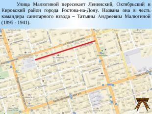 Улица Малюгиной пересекает Ленинский, Октябрьский и Кировский район города Р