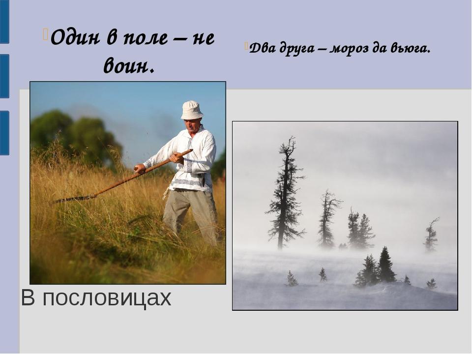 В пословицах Один в поле – не воин. Два друга – мороз да вьюга.