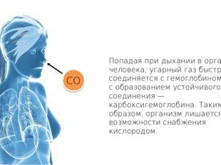 Попадая при дыхании в организм человека, угарный газ быстро соединяется с гем