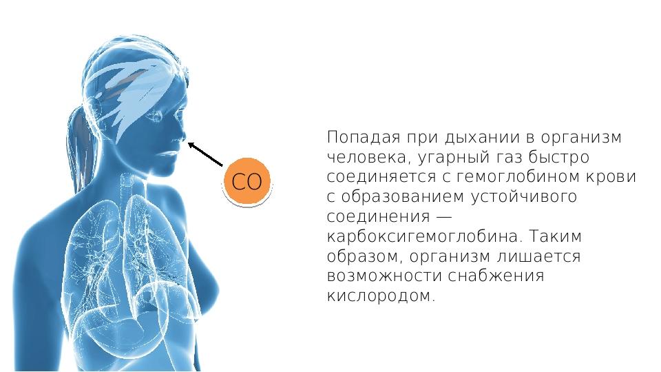 Попадая при дыхании в организм человека, угарный газ быстро соединяется с гем...