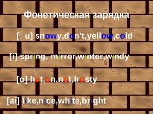 Фонетическая зарядка [əu] snowy,don't,yellow,cold [i] spring, mirror,winter,w