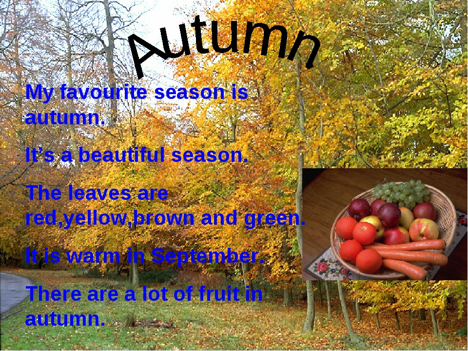 My favourite season is autumn. It's a beautiful season. The leaves are red,ye...