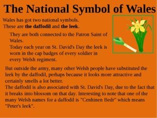St. David is the patron saint of Wales. He was a monk who lived on bread, wat