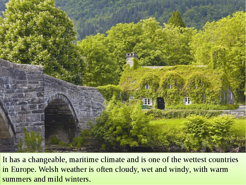 Wales has two official languages: English and Welsh For about 20% of the popu...