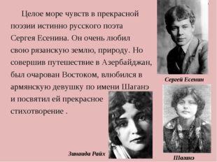 Целое море чувств в прекрасной поэзии истинно русского поэта Сергея Есенина.