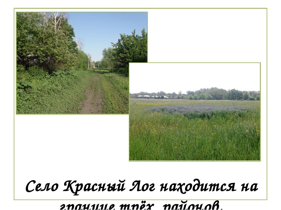 Село Красный Лог находится на границе трёх районов.
