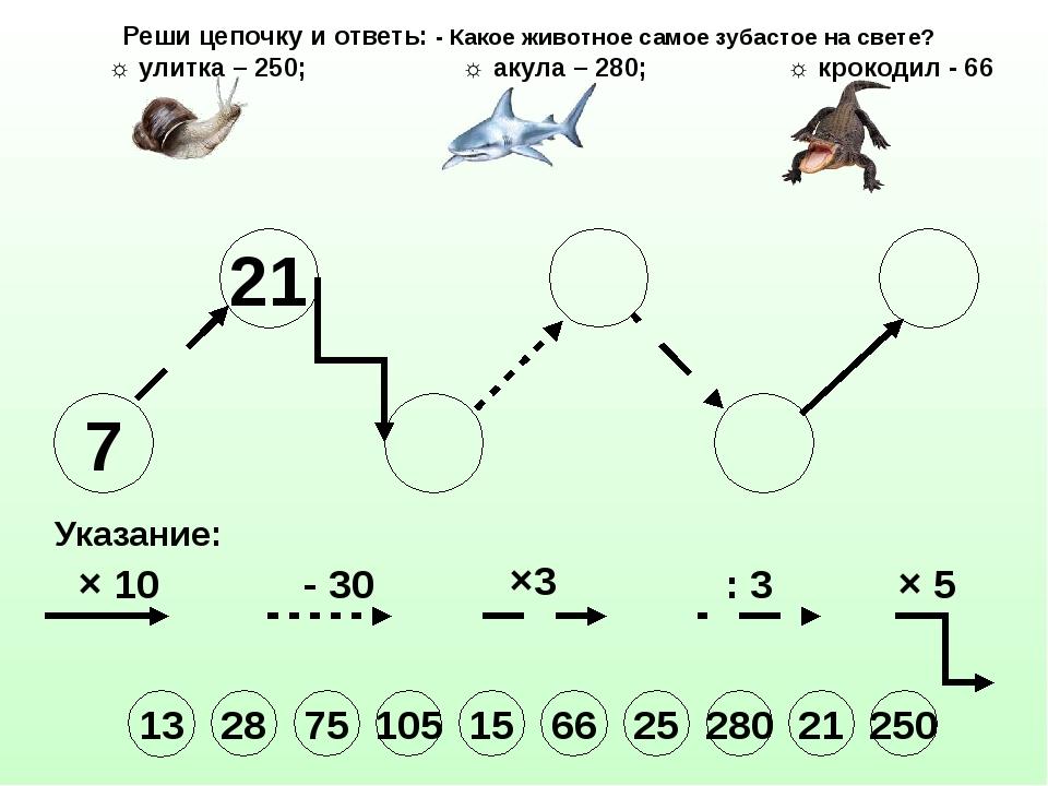 7 21 Указание: × 10 - 30 ×3 : 3 × 5 Реши цепочку и ответь: - Какое животное с...