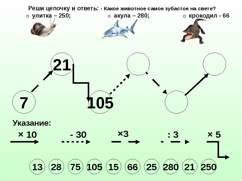 7 21 105 Указание: × 10 - 30 ×3 : 3 × 5 Реши цепочку и ответь: - Какое животн...