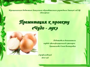 Муниципальное бюджетное дошкольное образовательное учреждение детский сад №1