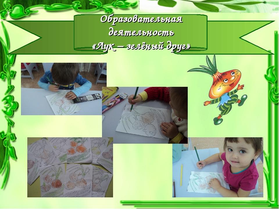 Образовательная деятельность «Лук – зелёный друг»