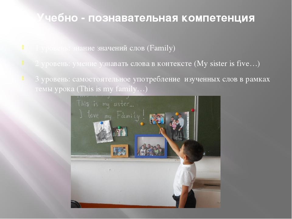 Учебно - познавательная компетенция 1 уровень: знание значений слов (Family)...