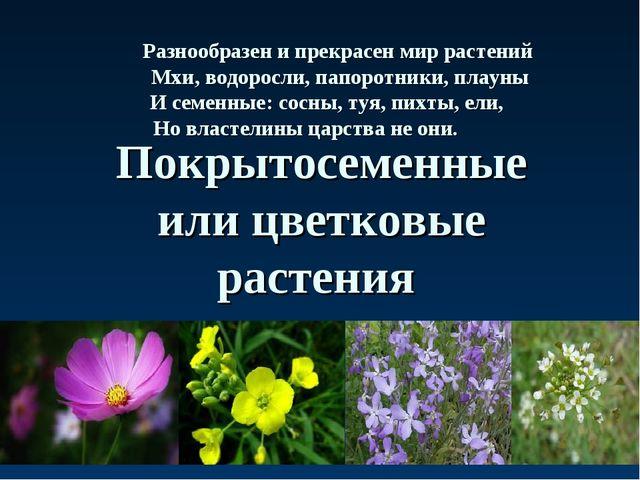 Покрытосеменные или цветковые растения Разнообразен и прекрасен мир растений...
