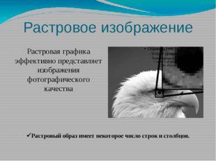 Растровая графика эффективно представляет изображения фотографического качест