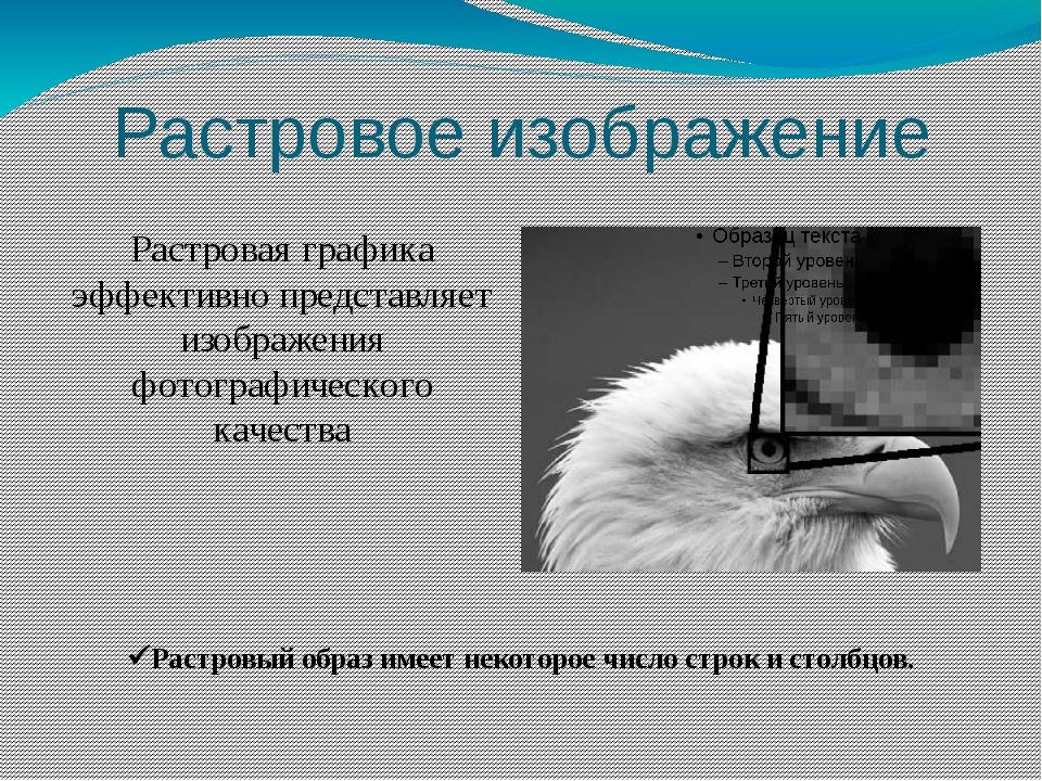Растровая графика эффективно представляет изображения фотографического качест...