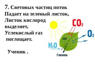 7. Световых частиц поток Падает на зеленый листок, Листок кислород выделяет,