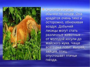 Охотится лисица обычно по ночам. Она крадётся очень тихо и осторожно, обнюхив