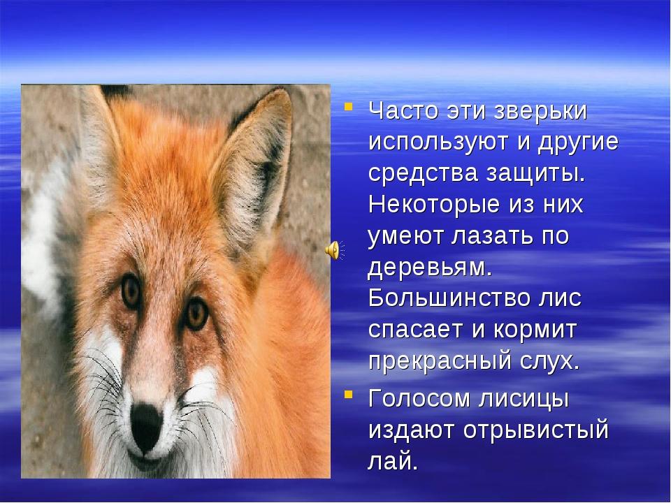 Часто эти зверьки используют и другие средства защиты. Некоторые из них умеют...