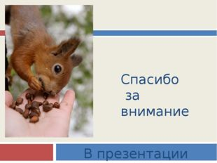 Спасибо за внимание В презентации использованы фото с разных сайтов
