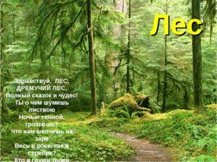 Лес Здравствуй,ЛЕС, ДРЕМУЧИЙ ЛЕС, Полный сказок и чудес! Ты о чём шумишь ли