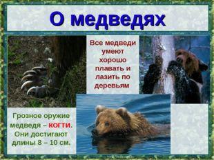 * Грозное оружие медведя – когти. Они достигают длины 8 – 10 см. О медведях В