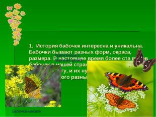 1. История бабочек интересна и уникальна. Бабочки бывают разных форм, окраса