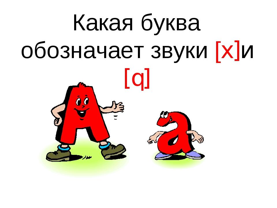 Какая буква обозначает звуки [x]и [q]