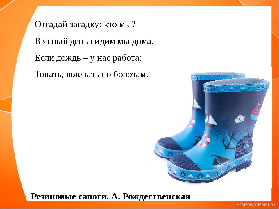 Отгадай загадку: кто мы? В ясный день сидим мы дома. Если дождь – у нас работ...