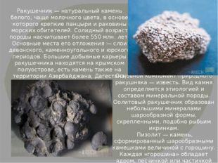 Ракушечник — натуральный камень белого, чаще молочного цвета, в основе которо