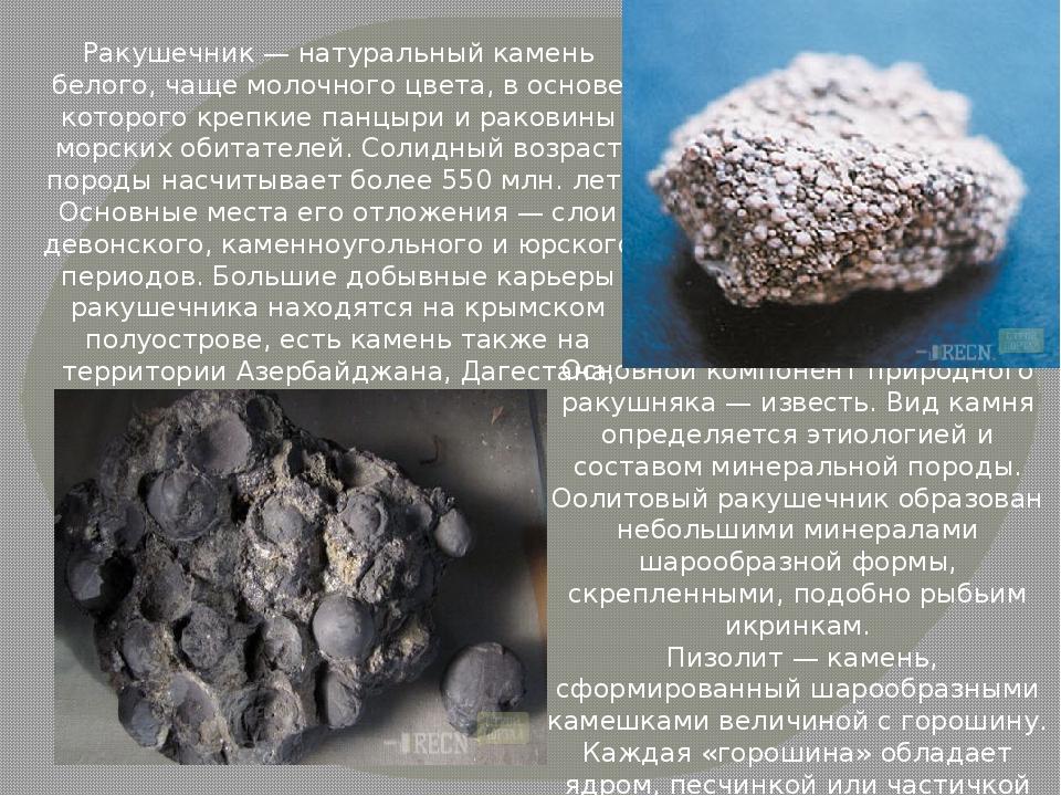 Ракушечник — натуральный камень белого, чаще молочного цвета, в основе которо...