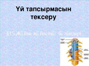 §15 Жүйке жүйесінің бөлімдері Үй тапсырмасын тексеру