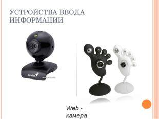 УСТРОЙСТВА ВВОДА ИНФОРМАЦИИ Web - камера