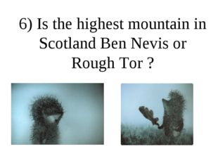 6) Is the highest mountain in Scotland Ben Nevis or Rough Tor ?