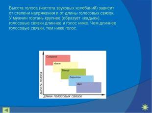 Высота голоса (частота звуковых колебаний) зависит от степени напряжения и от