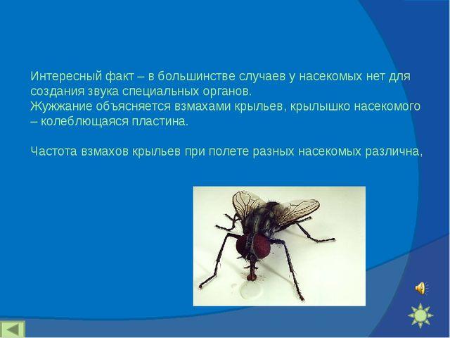 Интересный факт – в большинстве случаев у насекомых нет для создания звука сп...