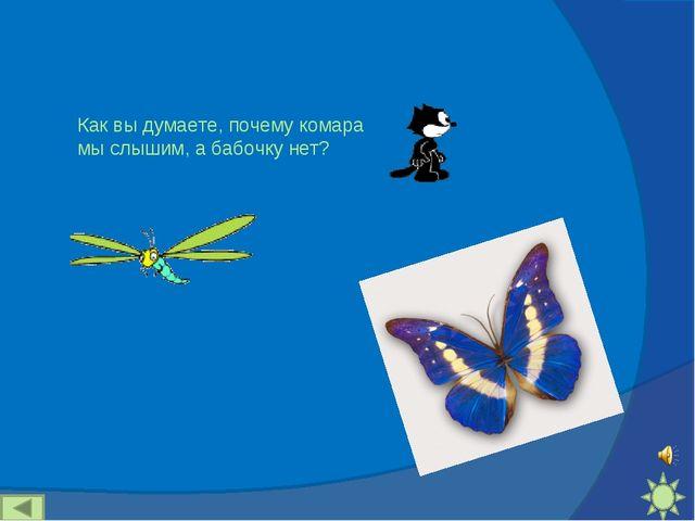 Как вы думаете, почему комара мы слышим, а бабочку нет?