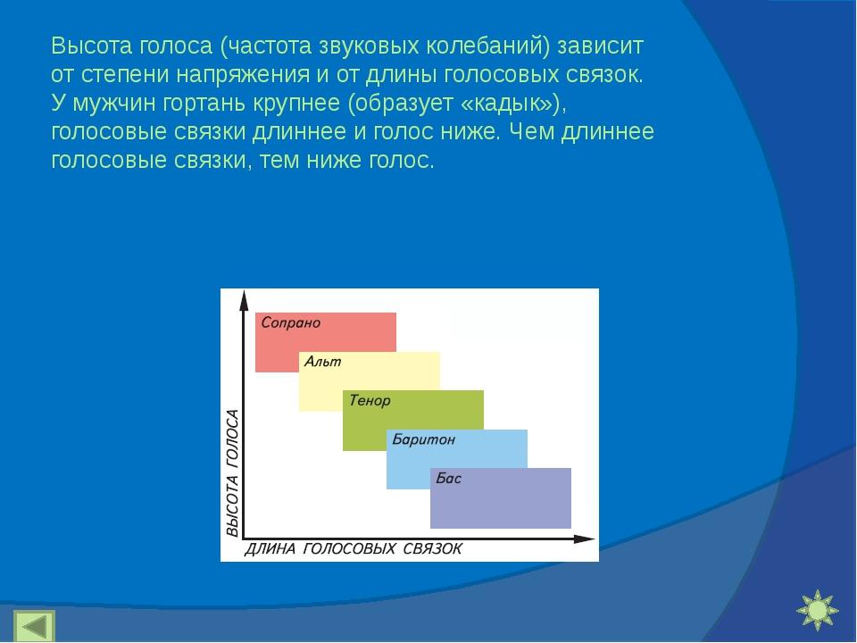 Высота голоса (частота звуковых колебаний) зависит от степени напряжения и от...