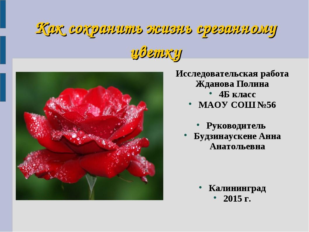 Как сохранить жизнь срезанному цветку Исследовательская работа Жданова Полина...