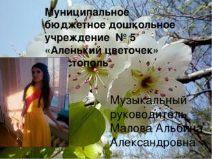 Муниципальное бюджетное дошкольное учреждение № 5 «Аленький цветочек» г.Чист