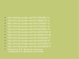 Ресурсы  http://im8-tub.yandex.net/i?id=71991850-14 http://im7-tub.yandex.n