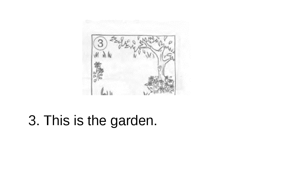 3. This is the garden.