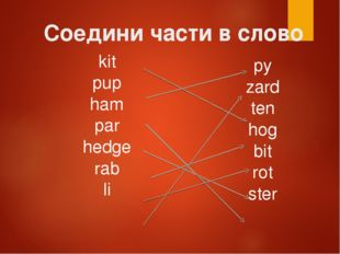 Соедини части в слово kit pup ham par hedge rab li py zard ten hog bit rot ster